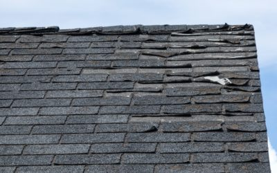 Do I Need a New Roof?
